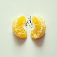 Pulmones de mandarina #mandarine