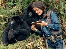 Los objetivos de Dian Fossey fueron estudiar la ecología del gorila, la demografía y la organización social.