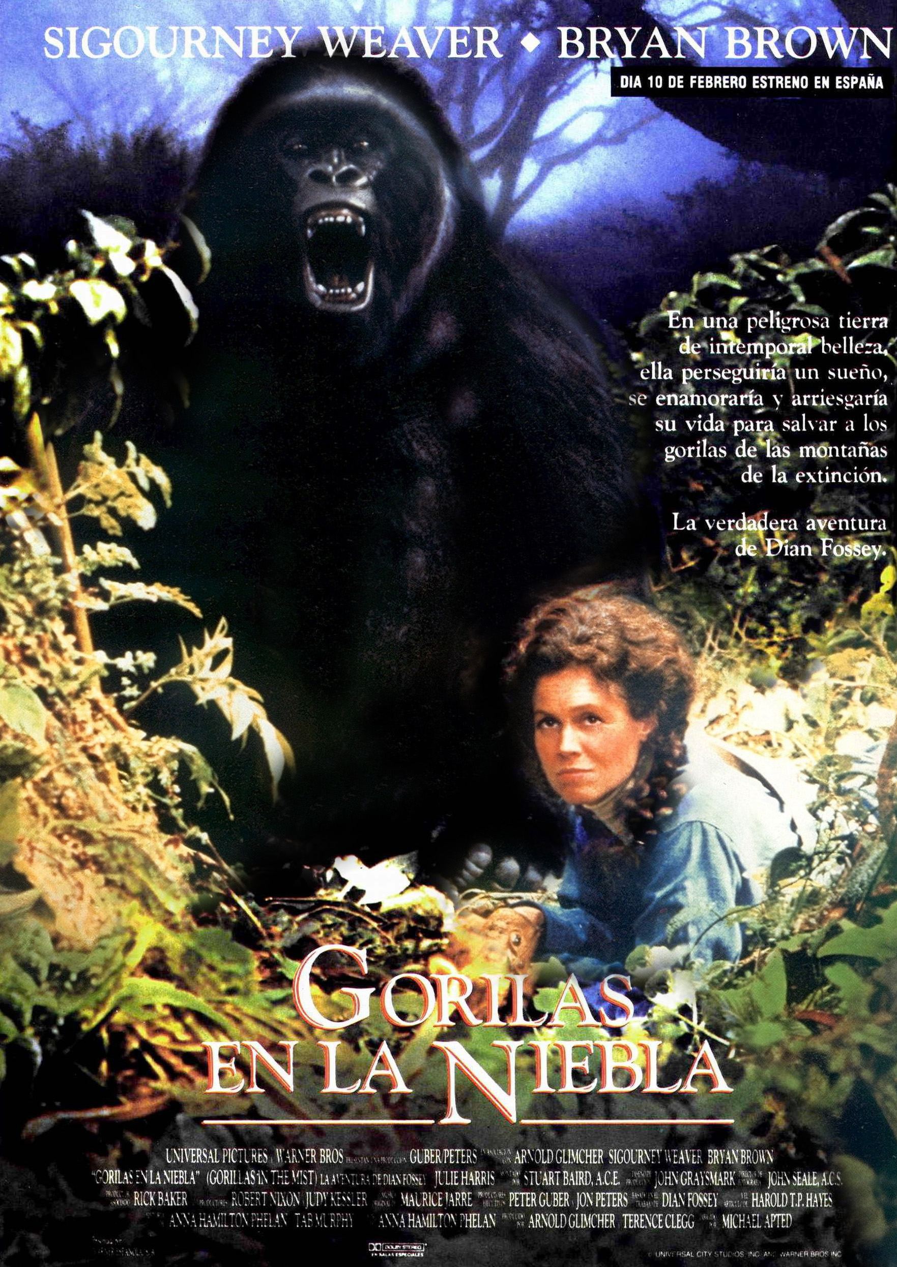 Qu fue de la zo loga estadounidense dian fossey amiga for Gorilas en la niebla